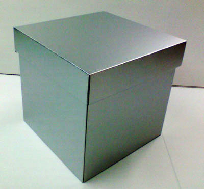http://www.taiyoushiki.com/case/blogimg/300x300x300silver1.jpg