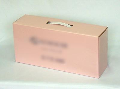 http://www.taiyoushiki.com/case/blogimg/bagmodel.jpg